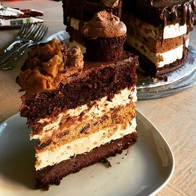 Chocolate Chocolate Chip Cookie Ice Cream Cake Slice